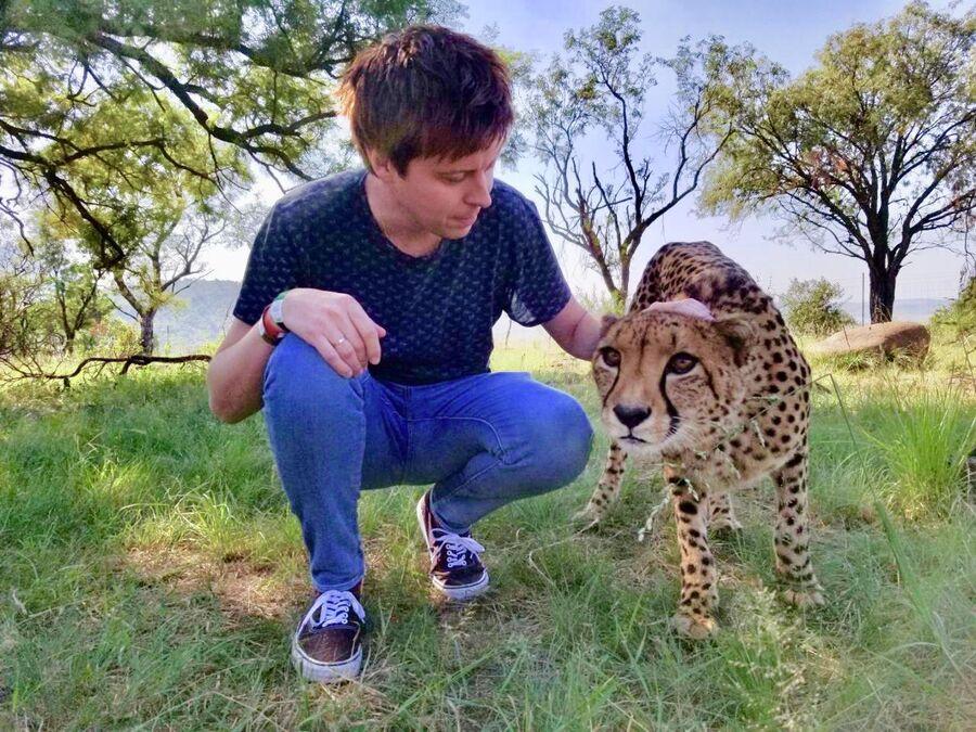 Прогулка с гепардом, Претория, ЮАР