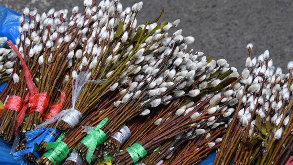 Продажа вербы на общегородской ярмарке на центральной площад
