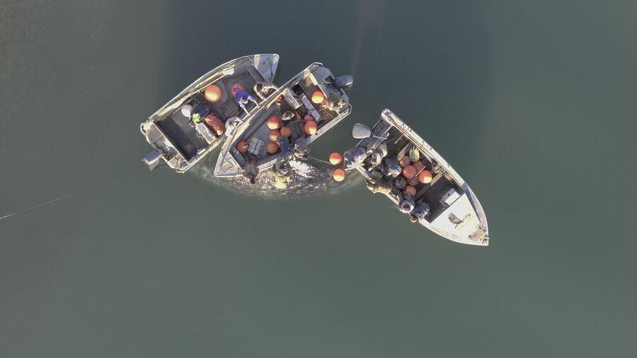 Лодки морских зверобоев Чукотки