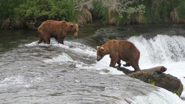 Национальный парк и заповедник Катмай в Аляске