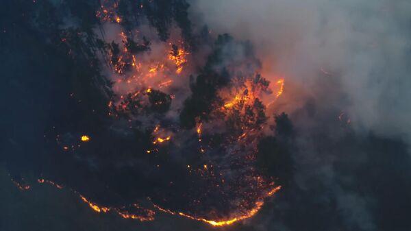 Огонь поглощает все, пожарных мало. Жители Иркутской области молят о помощи