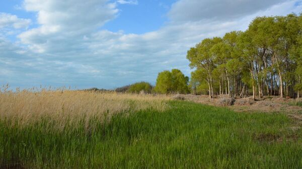 Природный резерват Иле-Балхаш