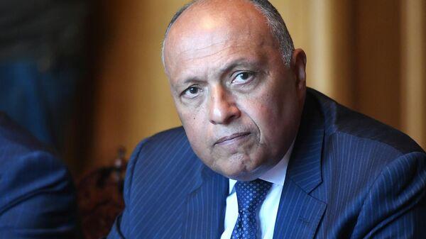 Министр иностранных дел Арабской Республики Египет Самех Шукри