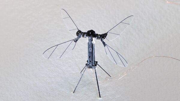 Робот-пчела, созданный инженерами из Гарварда