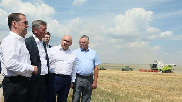 Председатель правительства России Дмитрий Медведев во время ознакомления с ходом работ по уборке зерновых культур в Курской области. 22 июля 2019