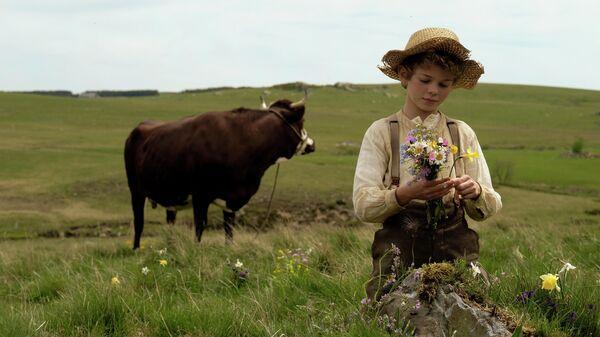 Кадр из фильма Приключения Реми