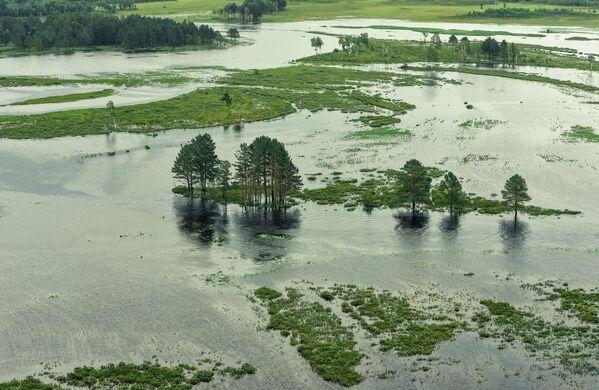 Территория, затопленная в результате разлива реки Селемджа, в Селемджинском районе Амурской области
