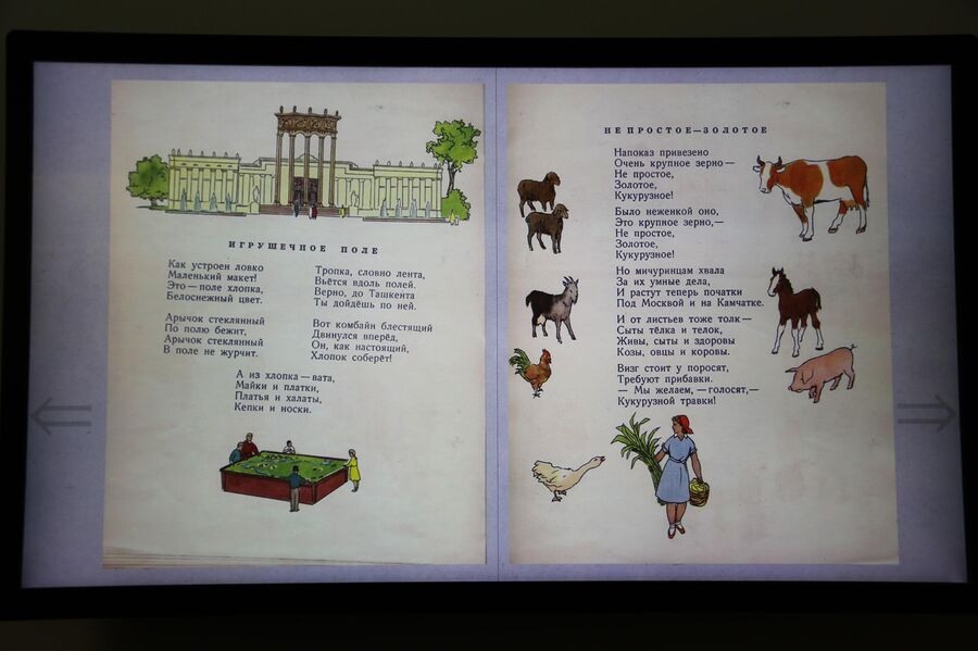 Стихи из книги поэтессы Елизаветы Тараховской Посмотрим выставку в павильоне Карелия на ВДНХ