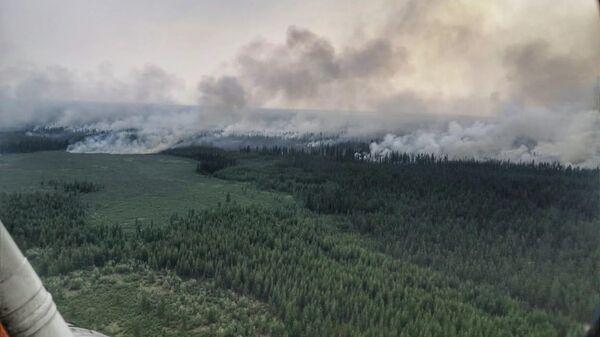 Лесной пожар в Республике Саха (Якутия)