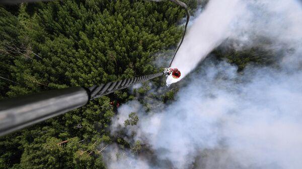 Ликвидация лесных пожаров