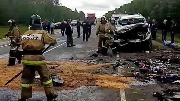 Сотрудники МЧС РФ на месте дорожно-транспортного происшествия в Сасовском районе Рязанской области, где столкнулись микроавтобус с легковым автомобилем. 6 августа 2019