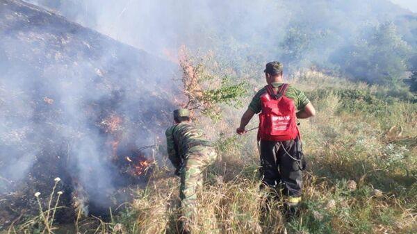 В Алма-Ате у телебашни на горе Кок-Тюбе загорелся сухостой