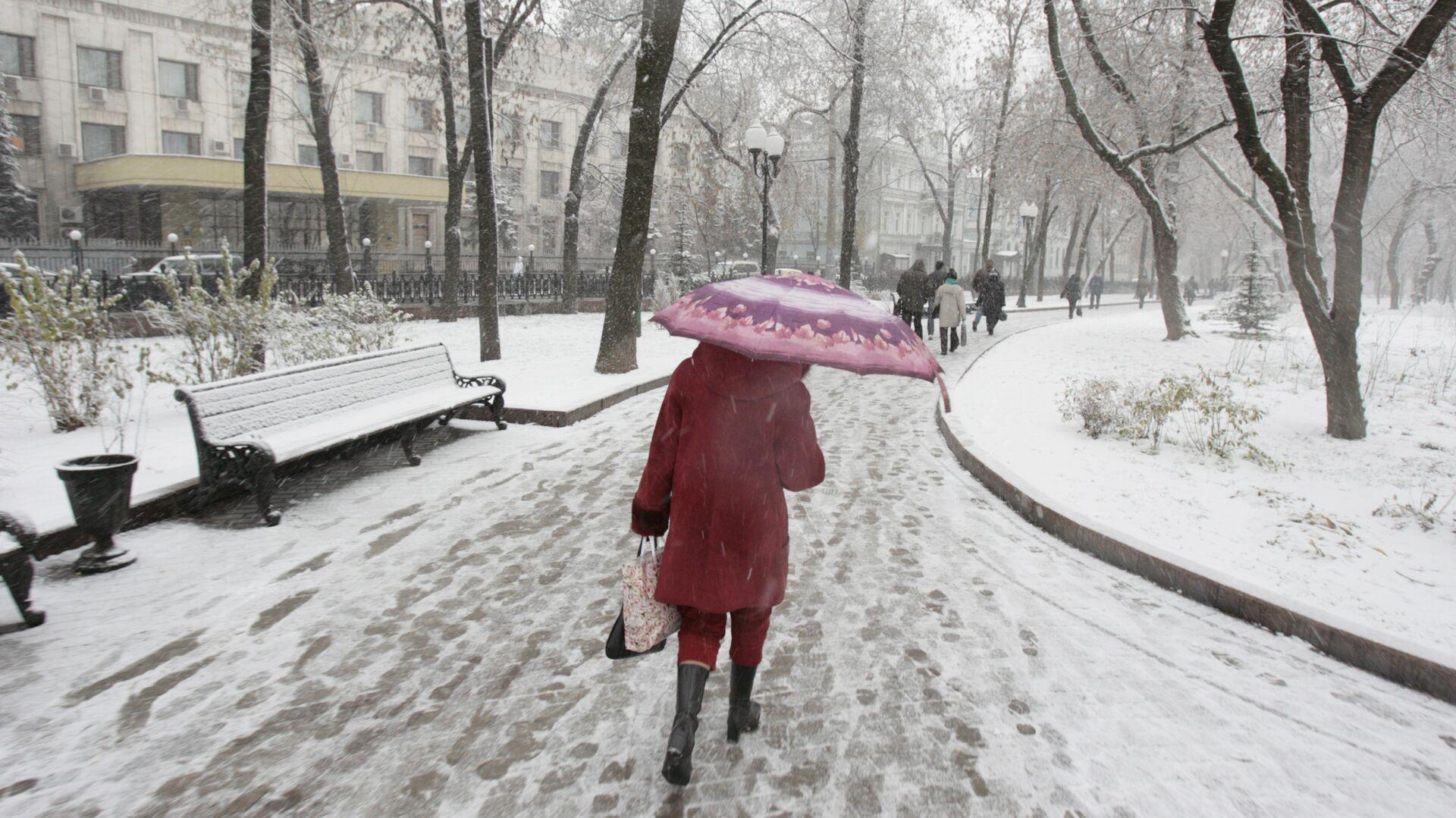 Первый снег - РИА Новости, 1920, 17.12.2020