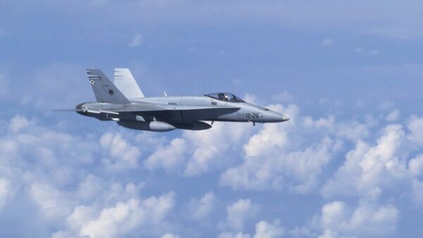 Истребитель НАТО F-18  попытался приблизиться к борту министра обороны РФ С. Шойгу