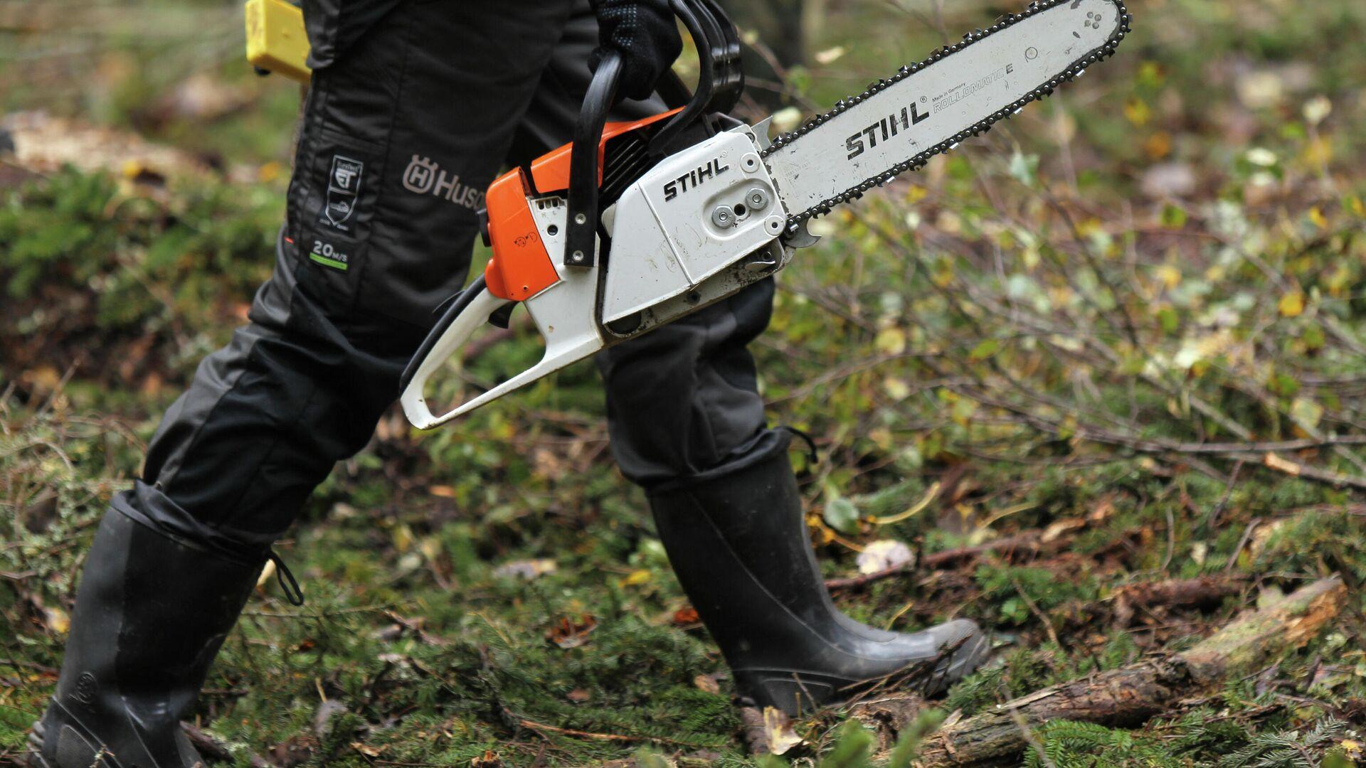 Бывший красноярский чиновник вырубил леса на 110 миллионов рублей