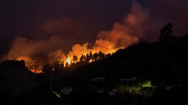 На Канарах объявили наивысший уровень угрозы природных пожаров