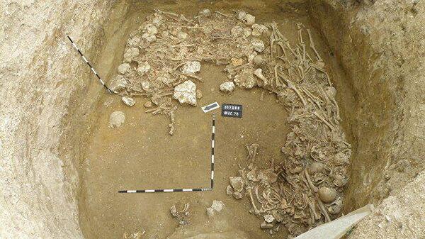 Фото предоставлено руководителем Опушкинской археологической экспедиции Игорем Храпуновым