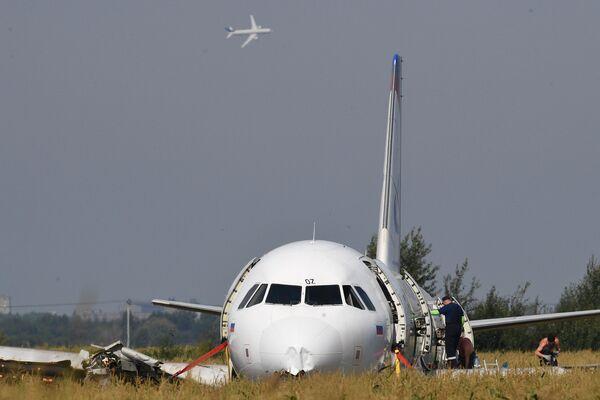 Самолет Airbus А321 авиакомпании Уральские авиалинии в кукурузном поле в районе деревни Рыбаки в Раменском районе Московской области.