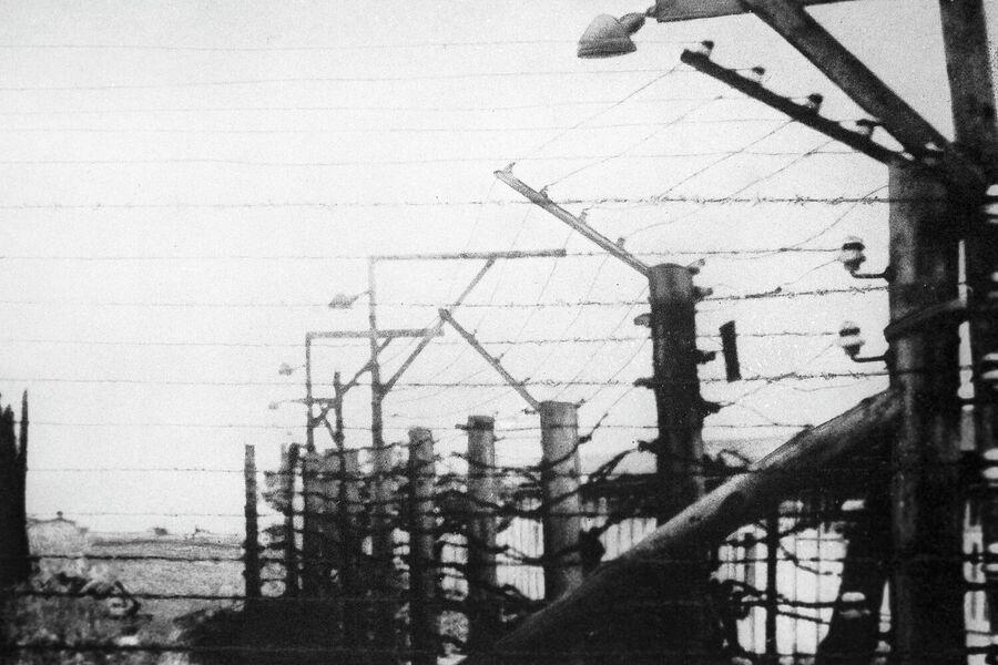 Мемориал жертвам фашизма на месте бывшего концентрационного лагеря Бухенвальд. Лагерная ограда из колючей проволоки с пропущенным через нее электрическим током
