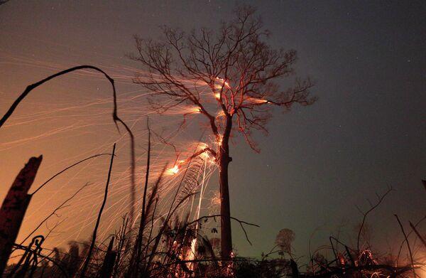 Лесные пожары в джунглях бассейна реки Амазонки