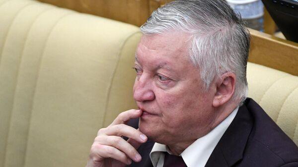 Заместитель председателя Комитета ГД по международным делам Анатолий Карпов