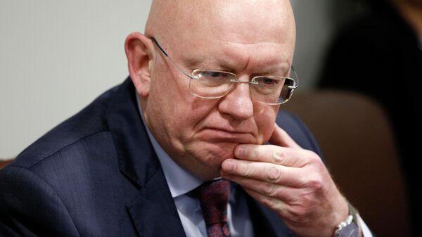 Постоянный представитель России при ООН Василий Небензя