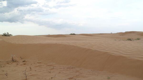 Как Калмыкия превратилась в пустыню