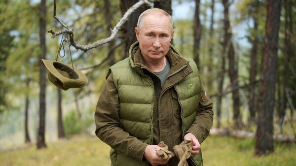 Президент РФ Владимир Путин во время прогулки в тайге