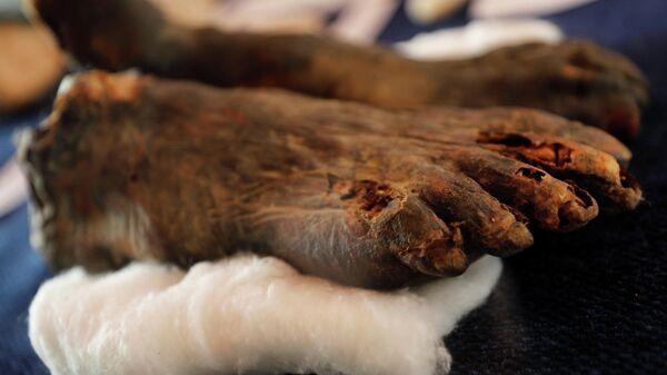 Ступни мумии, найденные в результате раскопок в Долине Обезьян возле Долины Царей в Луксоре