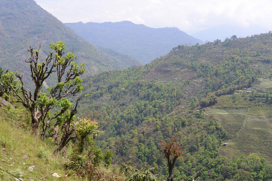 Горы и холмы в штате Сикким в Индии