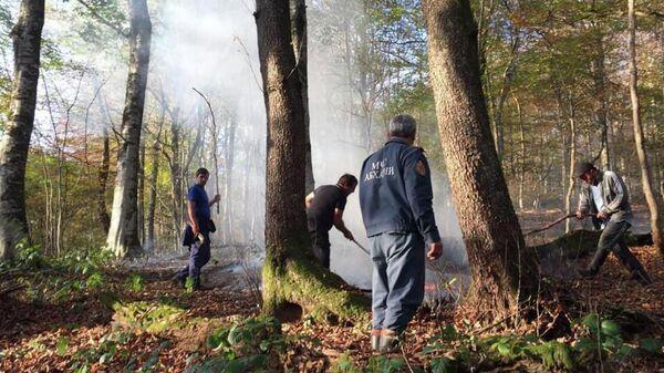 Пожары в высокогорной части Абхазии в ноябре 2019