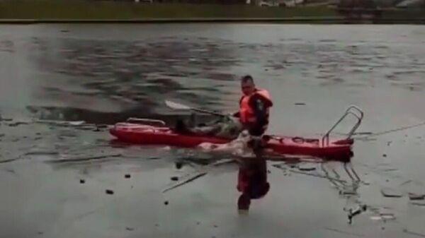 Спасение собаки, провалившуюся под лёд в  Салавате