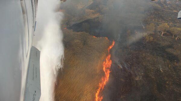 МЧС РФ и Минприроды создали рабочую группу для эффективного выявления и тушения пожаров