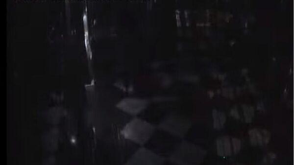 Дрезденская полиция опубликовала видео ограбления сокровищницы