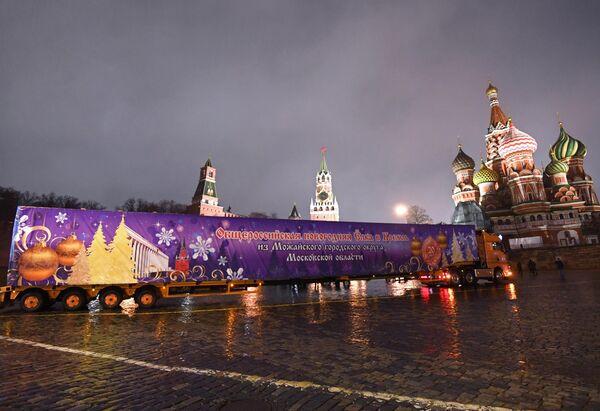 Главную новогоднюю елку России привезли в Кремль
