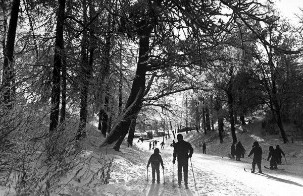 Лыжная прогулка в Измайловском парке