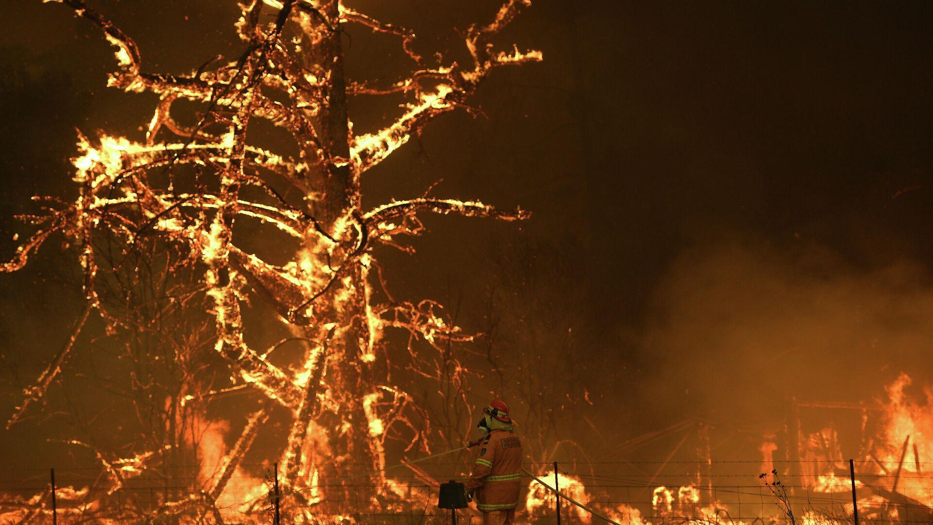 Лесные пожары в Австралии  - РИА Новости, 1920, 07.02.2021