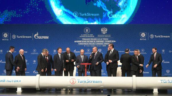 Президент РФ Владимир Путин и президент Турции Реджеп Тайип Эрдоган на церемонии официального открытия газопровода Турецкий поток в Стамбуле