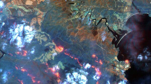 Лесные пожары в штате Новый Южный Уэльс, Австралия. Спутниковое изображение Maxar WorldView-3