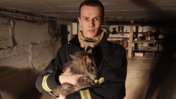 Сотрудник МЧС с кошкой, спасенной в подвале школы №8 Губкина