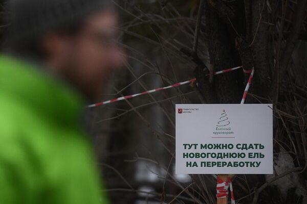 Акция Елочный круговорот в Москве