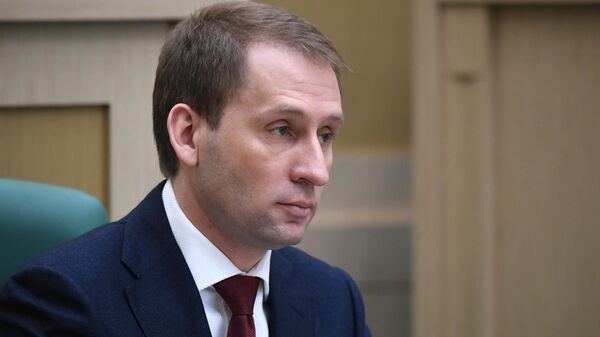 Министр РФ по развитию Дальнего Востока и Арктики Александр Козлов на заседании Совета Федерации РФ