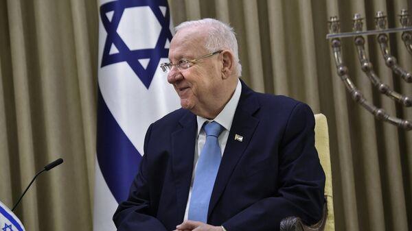 Президент Израиля Реувен Ривлин во время встречи с президентом РФ Владимиром Путиным в резиденции президента в Иерусалиме