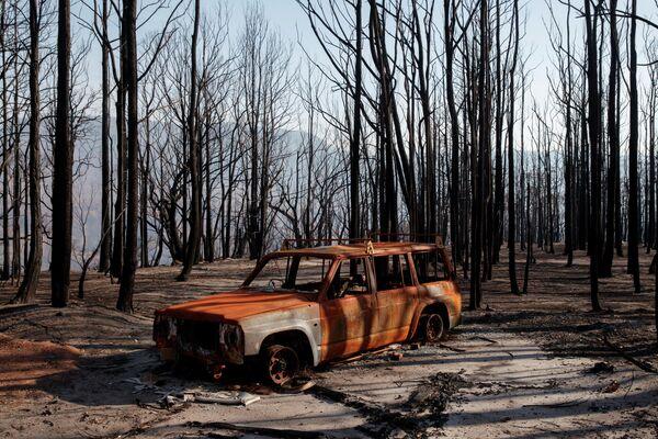 Последствия пожара в Долине кенгуру в австралийском штате Новый Южный Уэльс