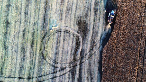 Уборка урожая рапса в Красноярском крае