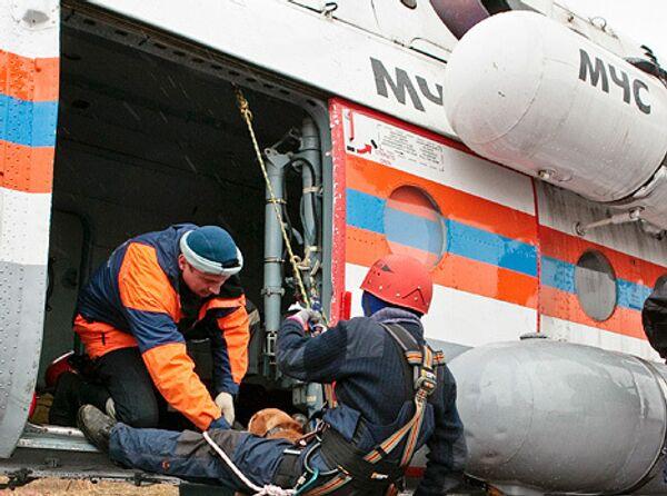 МЧС предлагает создать вертолетную скорую помощь на ключевых трассах