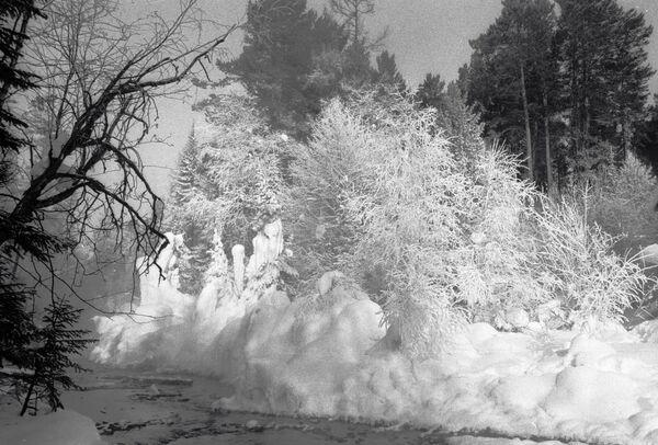 Температура опустилась до 57 градусов на полюсе холода в Якутии