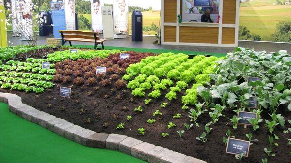 Международная сельскохозяйственная выставка Зеленая неделя в Берлине