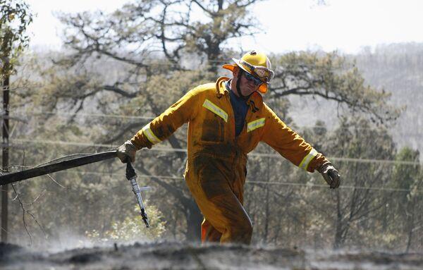 Власти Австралии ожидают усиления лесных пожаров из-за жары и ветров