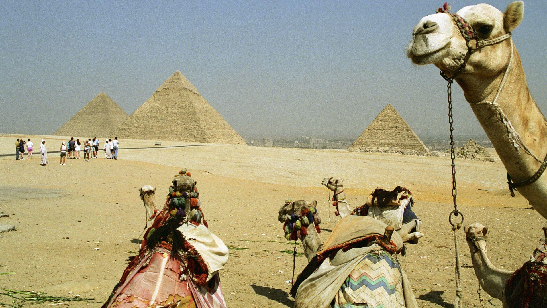 Пирамиды, Египет - РИА Новости, 1920, 27.01.2021
